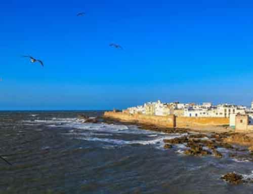 DREAMING OF ESSAOUIRA