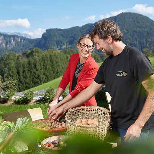 Angerer Alm am Kitzbüheler Horn in St. Johann in Tirol