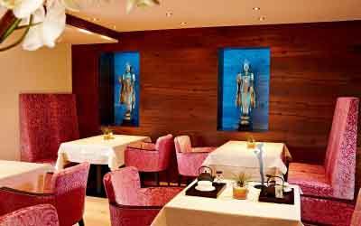 Panchakarma cure Light @Ayurveda Resort Sonnhof Hinterthiersee Tyrol Austria - Niche Destinations