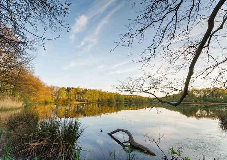 La Butte aux Bois Lanaken Belgium