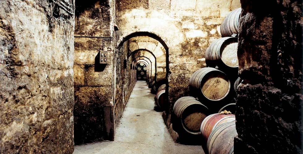 Wine Tasting SPA-Hotel Jagdhof Bodega Marqus de Riscal partea ntigua