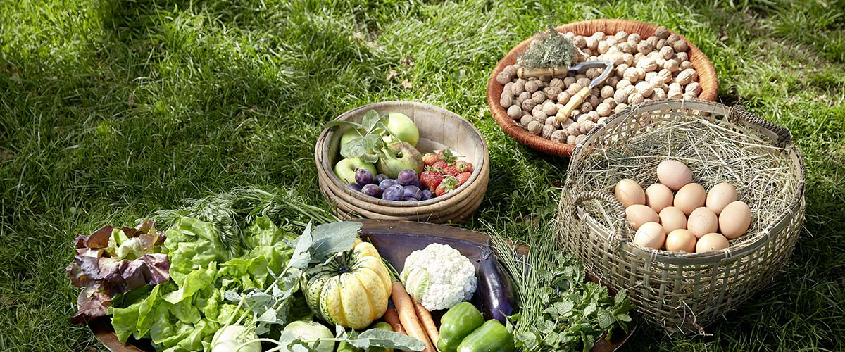 Ayurvedic nutrition – discover Ayurvedic recipes at home