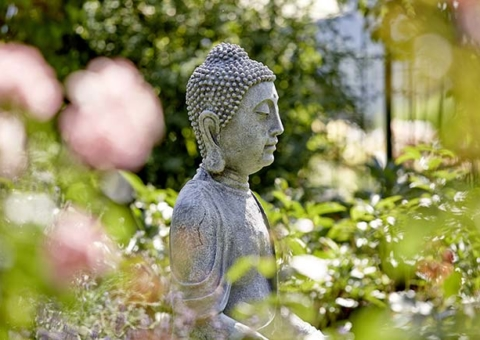 Clear your mind with European Ayurveda®, Yoga and mind detoxing