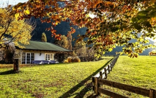Golden Autumn_Austria in October_Teaser