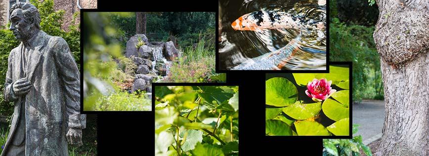 Botanic Sanctuary Antwerp - Botanic Garden